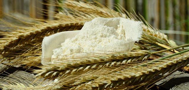 Farina di grano duro Senatore Cappelli - Fattoria Donna Tina 8428d6056268